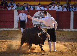 """""""El Poca"""" recontando un toro."""