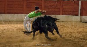 Rejoneador recortando un toro en el Concurso de cortes de Guarrete
